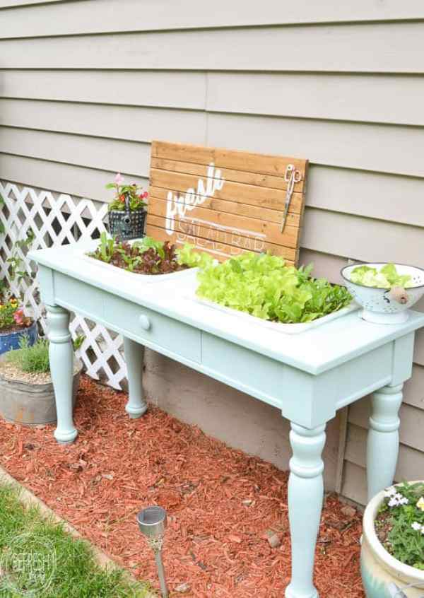 raised garden bed from sofa table