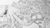 A Stunning Intricate Animal Coloring Book; 'Animorphia' by ...