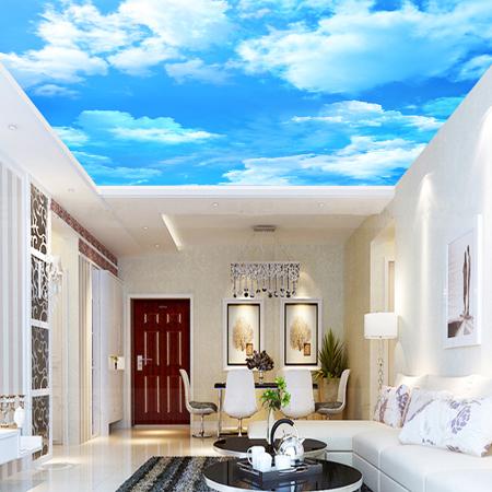 3d Wallpaper For House Walls India 27 Ceiling Wallpaper Design And Ideas Inspirationseek Com