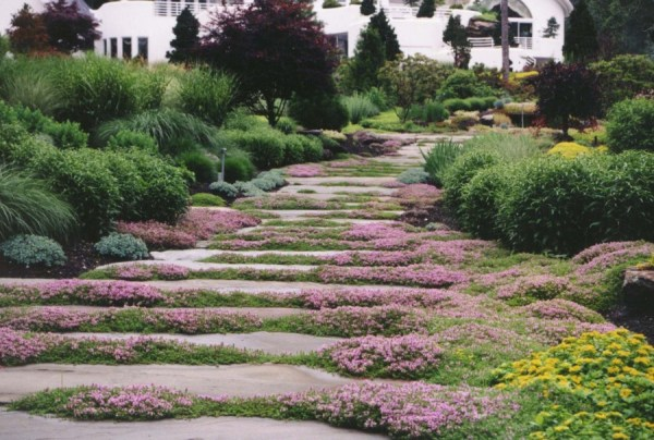 garden stepping stone design
