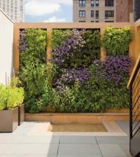 Wall Garden Design, 4 Techniques to Create A Wall Garden ...