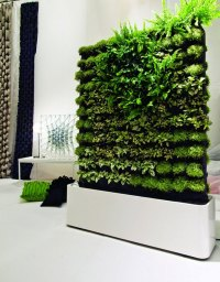 Wall Garden Design, 4 Techniques to Create A Wall Garden ...