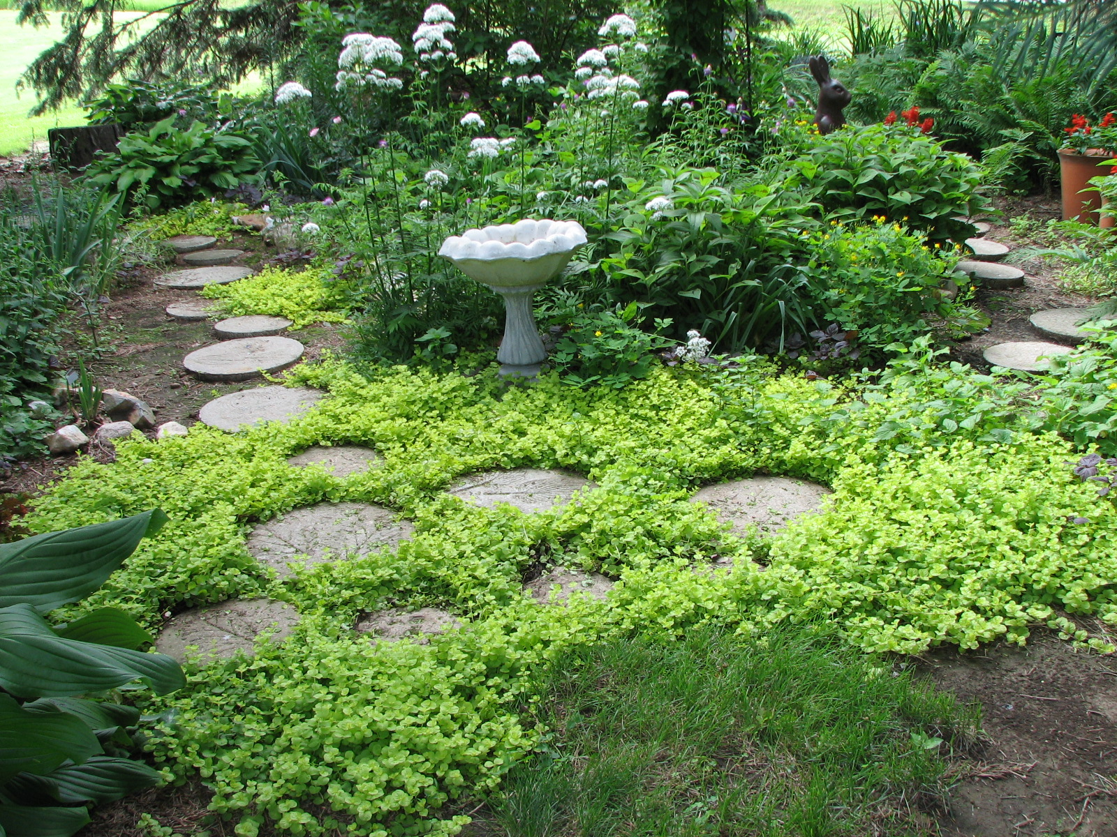 Garden Stepping Stone Ideas