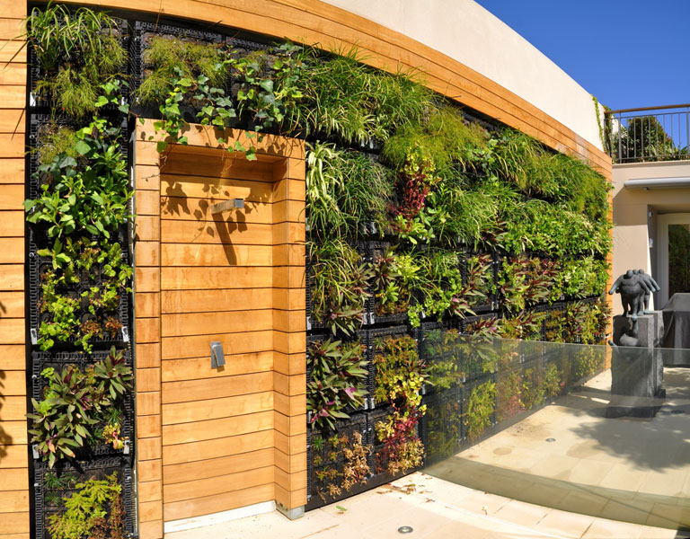 title | Garden Wall Ideas