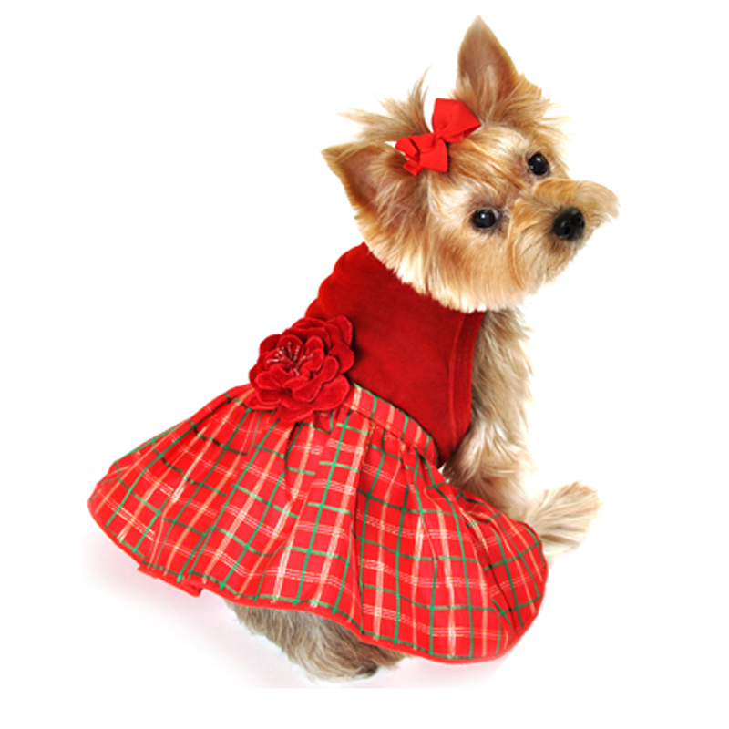 Christmas Outfits Ideas for Dogs