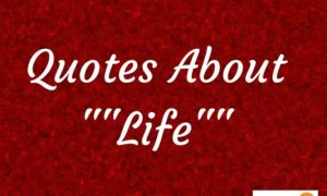 Quotes About Life : 9 Powerful Life Quotes For Self Development