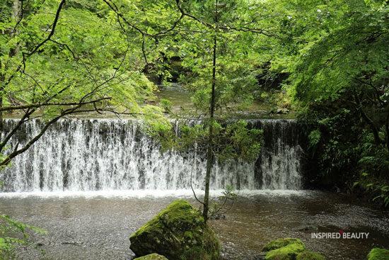 Nature, Beauty, Landscape