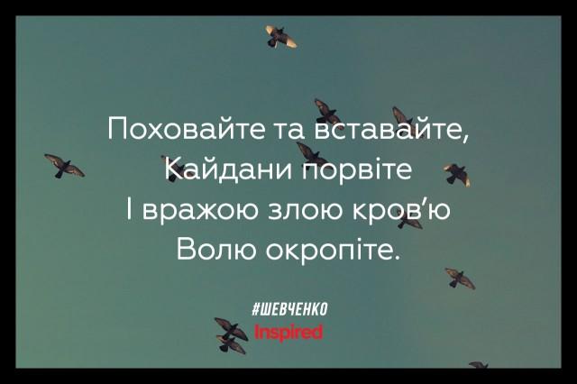 shev10