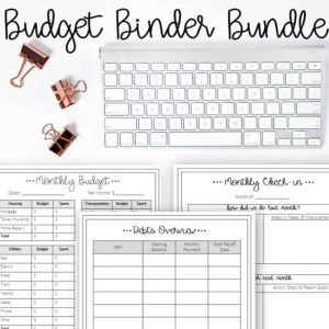 budget binder by inspiredbudget.com
