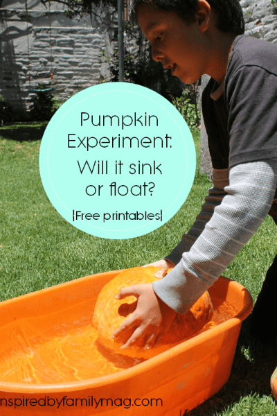 Pumpkin Science Experiment: Sink or Float?