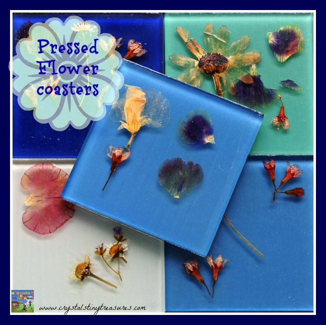 Pressed-Flower-Coasters