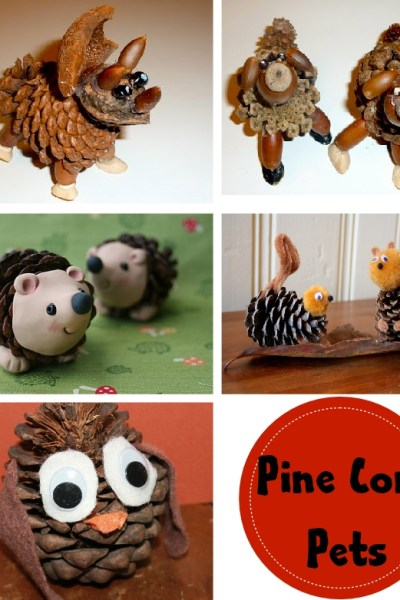 Nature Walk Craft: Pine Cone Pets