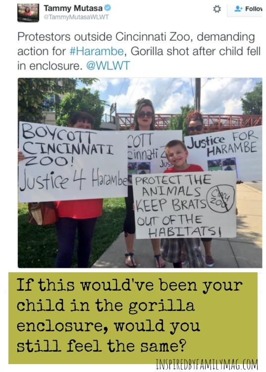 zoo protestors