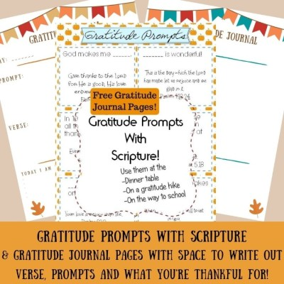 Gratitude Prompts Family Activity