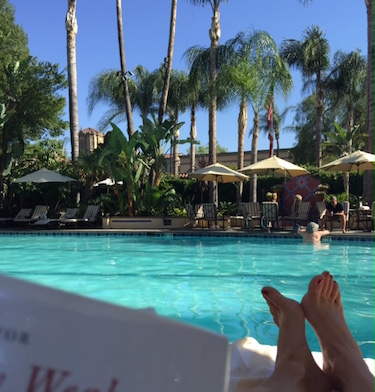 My view of the Mission Inn's pool.  From my shady lounge chair, with a book in my hand.