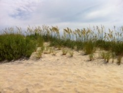 OuterBanks2