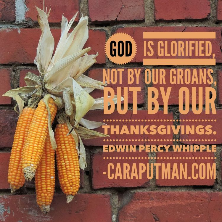 thanksgiving-whipple-quote