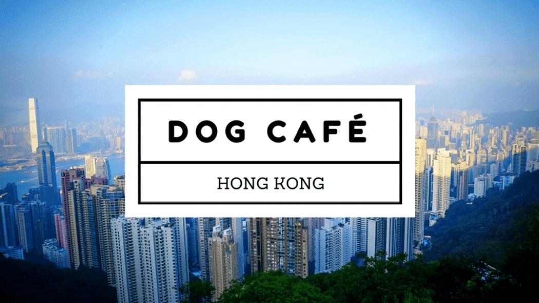 On Dog Dog Cafe