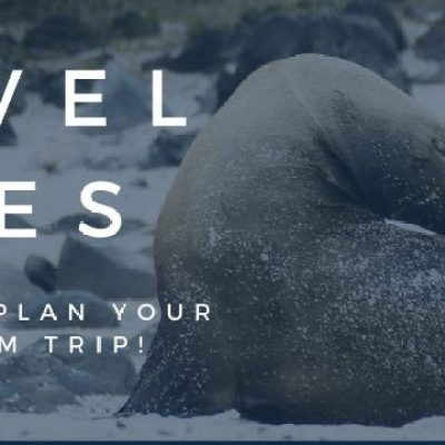 Travel Sites You Need to Plan Your Next Dream Trip!