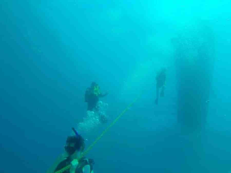 Cartagena Scuba Diving: As Good Under the Sea As On Land!