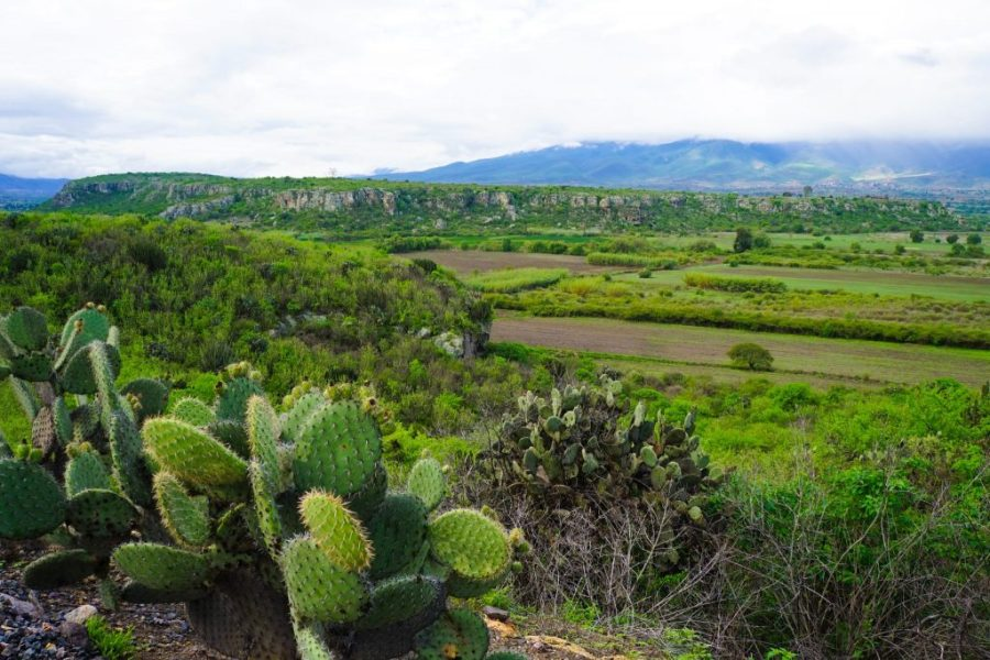 what to do oaxaca city - NESCO Listed Prehistoric Caves of Yagul in the Central Valley of Oaxaca!