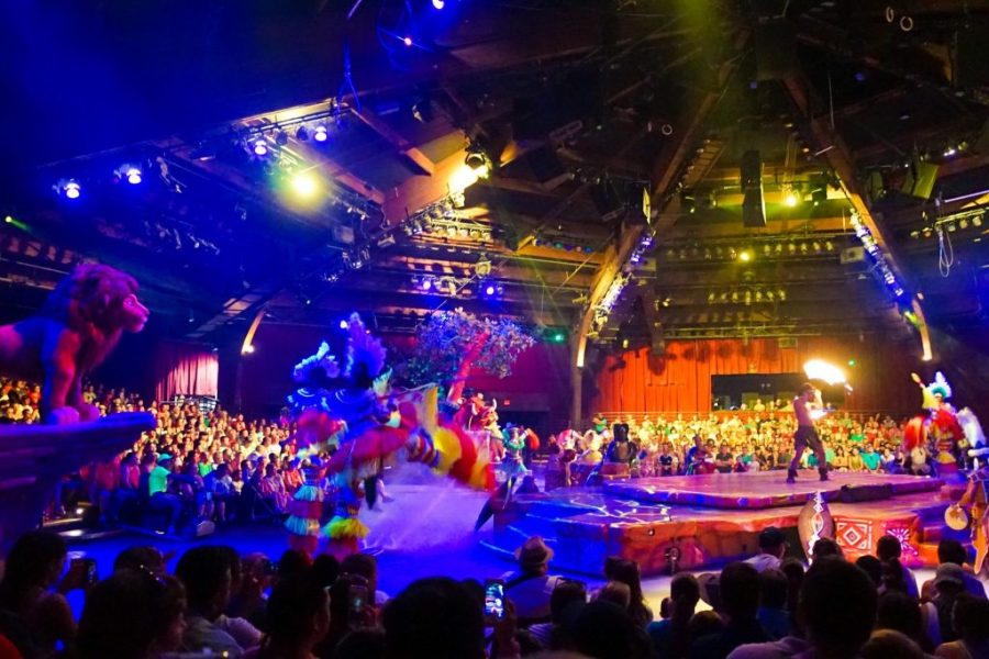 What To Do In Disney World When It Rains? - Lion King Show