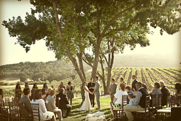 Inspired By My Wine Country Wedding