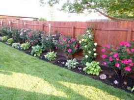 Amazing 9+ Backyard Privacy Fence Landscaping Ideas On A Budget 08