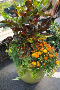 88+ Amazing Fall Container Gardening Ideas (30)