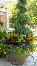 88+ Amazing Fall Container Gardening Ideas (56)
