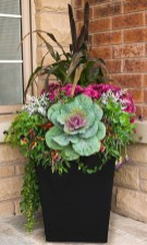88+ Amazing Fall Container Gardening Ideas (59)