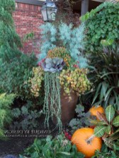 88+ Amazing Fall Container Gardening Ideas (62)