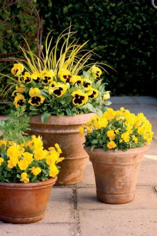 88+ Amazing Fall Container Gardening Ideas (63)