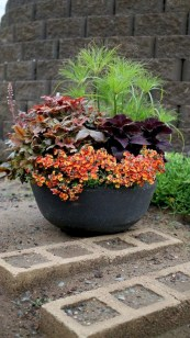 88+ Amazing Fall Container Gardening Ideas (78)