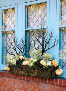 88+ Amazing Fall Container Gardening Ideas (79)