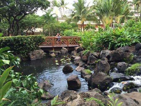 Grand Wailea Luxury Vacation Resort