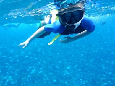 Kids Snorkeling Molokini