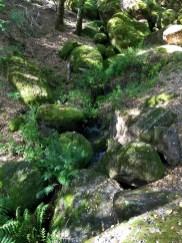 Bear Gulch Day Use Area