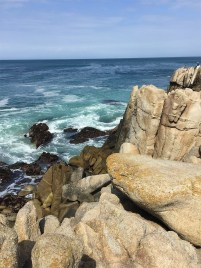 Climbing Roacks and Watching Waves Crash at Lovers Point in Pacific Grove