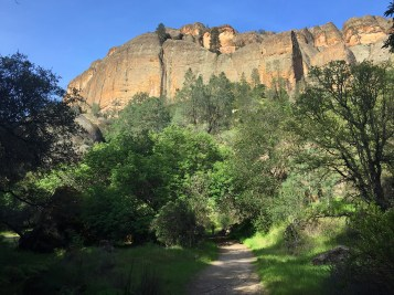 Old Pinnacles To Balconies Cave Trail