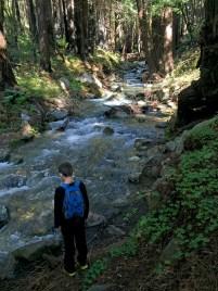 Hiking Along Limekiln Creek in Limekiln Canyon
