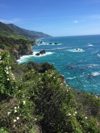 View of the rocky California Coast Along An Alternate Trail Route To McWay Falls