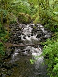 Bridal Veil Creek In Multnomah County, Oregon