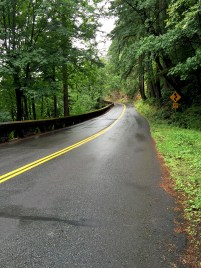 Driving The Columbia River Gorge Highway