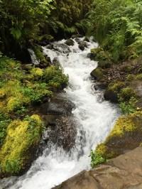 Hike Past Wahkeena Creek To Reach Fairy Falls
