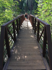 Beaver Creek Memorial Bridge on the South Grove Trail