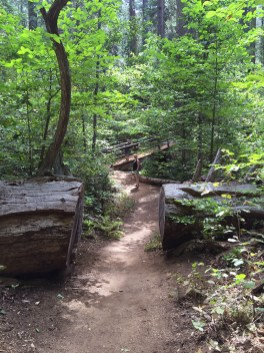 Big Trees Creek Bridge