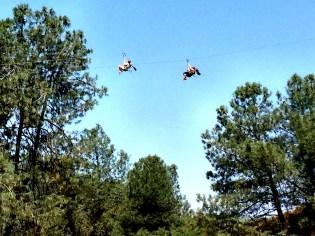 California Twin Zip Line Race