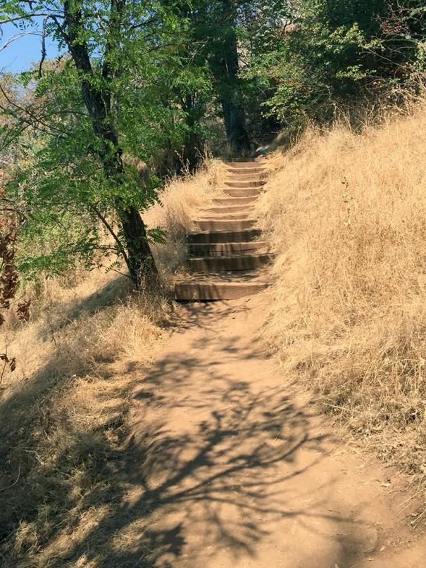Natural Bridges Trail Stairs