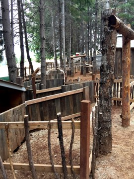 Apple Hill Kids Maze and Play Town at Mill View Ranch